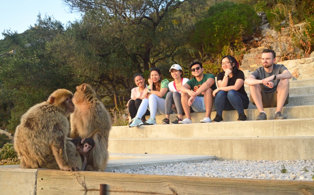 EY & Monkey Talks